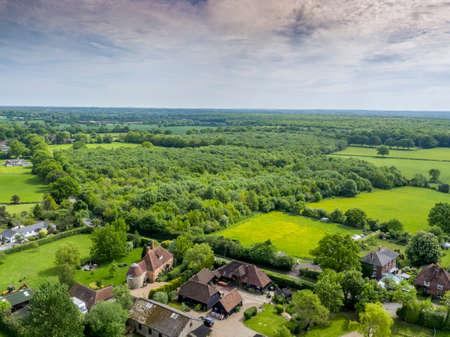 Dering Woods, Kent, UK