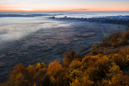 Autumn yellow trees and blur fog in the valley. Sunrise cold morning mood. Aerial drone photo landscape.
