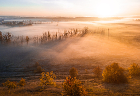 Deep thick fog in the valley. Long shadows from the trees. Atmospheric beautiful dawn. Aerial drone photo. Amazing golden sun scenic rays through the trees Stockfoto