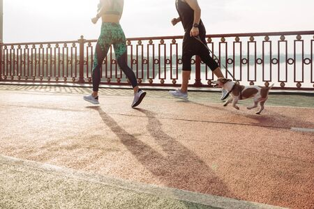 Active young couple jogging with a dog. Morning running with pet. Sport for all family. Morning backlight. Weekend challenge marathon. athletes training