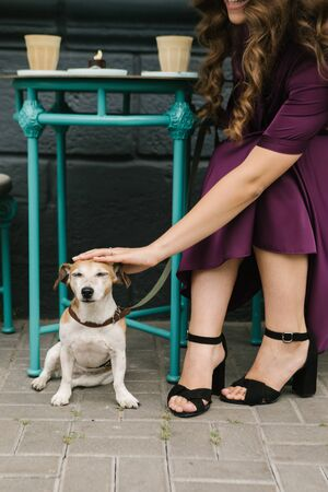 Petting dog. Street cafe. Young woamn in beautiful violet dress