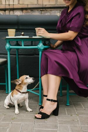 dog and woman in street cafe. having lunch out. Elegant style purple stylish silk dress