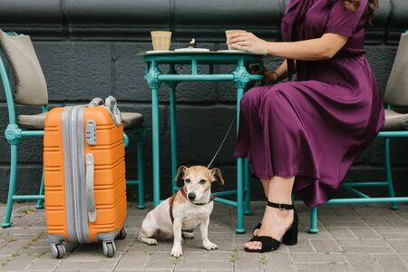 Coffee break in travel. Dog and woman in street cafe