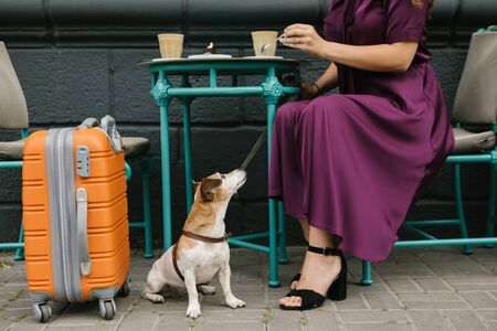 Waiting for departure. Travel lovers. Dog and woman in street cafe