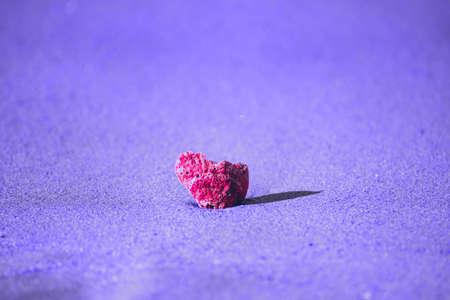 Pink seashell close up on purple sand at sea beach