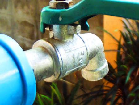 borne fontaine: hydrant dans le jardin