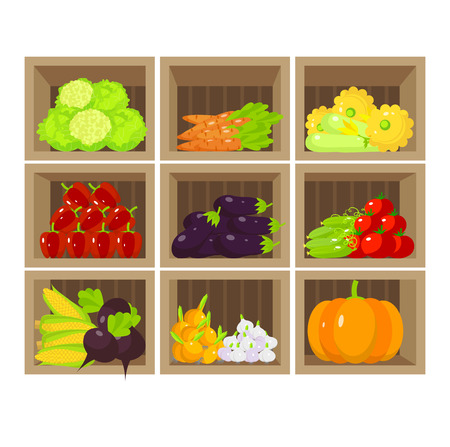 food products: Local vegetable stall. Fresh organic food products shop on shelves. Flat illustration