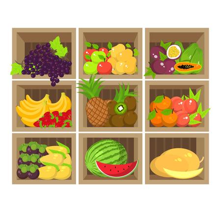 fresh produce: Local fruit stall. Fresh organic food products shop on shelves. Flat illustration