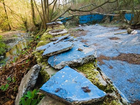 Overgrown pool next to a stream in a post-apocalyptic setting.