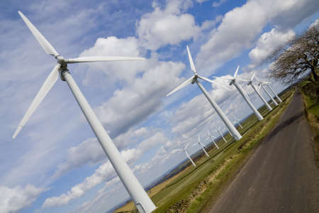 windfarm: Windmills in windfarm shown at perspective view