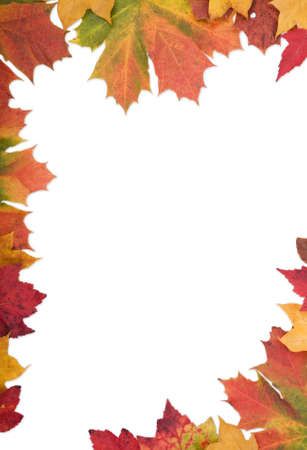 falls: Document border made from mixed autumn leaves Stock Photo