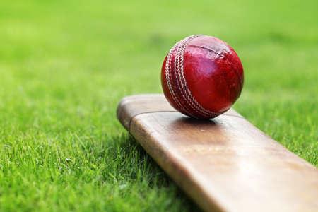 murcielago: Bola de grillo que descansa sobre un bate de cricket en la hierba verde del campo de cricket