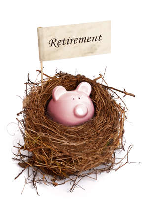 retirement fund: Retirement nest egg, piggy bank in birds nest Stock Photo