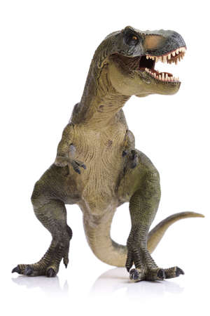tiranosaurio rex: T-Rex dinosaurio aislado en blanco
