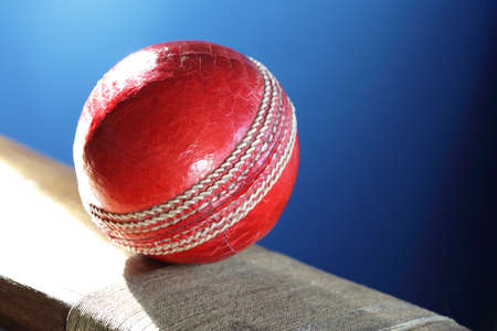 Cricket ball resting on a cricket bat with blue background photo