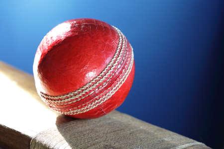 cricket bat: Cricket ball resting on a cricket bat with blue background