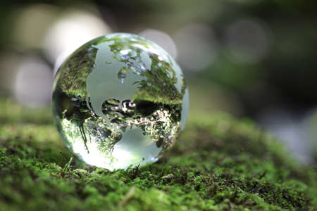 earth pollution: Glass globe resting on moss stone in a forest