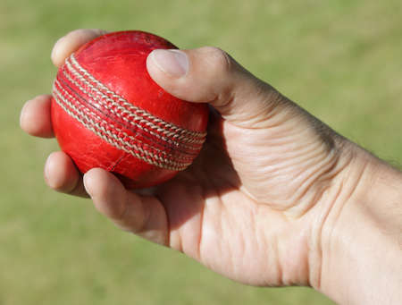 cricket ball: Cricket bowler about to bowl ball against a grass background