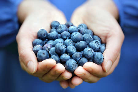 handful: Woman with handful of freshly picked organic blueberries