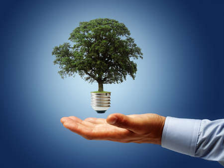Sustainable resources, renewable energy and environmental conservation concept