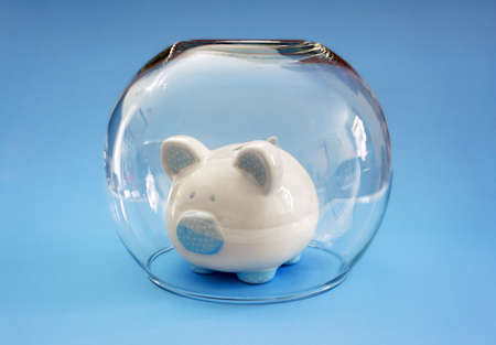 protecting your business: Protect your money, fish bowl covering a piggy bank concept for protecting your assets, financial help, insurance and investment