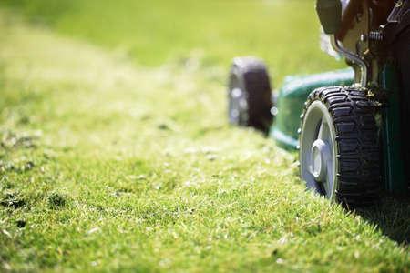 Tondre ou couper l'herbe longue avec un vert tondeuse à gazon dans le soleil d'été Banque d'images - 38970363