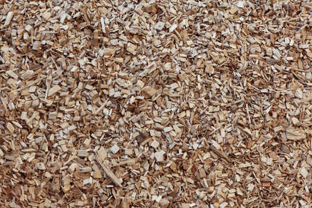 wood chip: Wood chip chipping or  shredded mulch material texture background