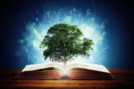 Buch oder Baum der Erkenntnis Konzept mit einer Eiche wächst aus einem offenen Buch und Buchstaben fliegen von den Seiten