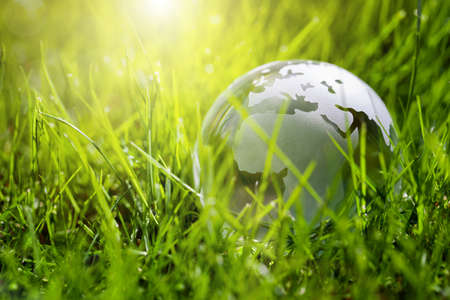 environmental protection: Glass globe in the grass concept for environment and conservation Stock Photo
