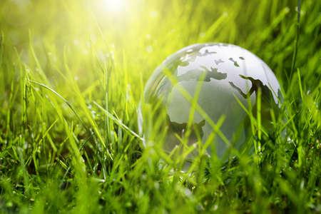 Glazen bol in het gras concept voor het milieu en het behoud Stockfoto