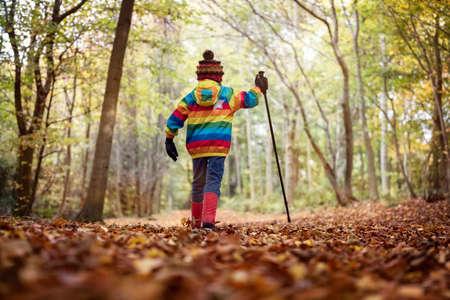 Junge, der mit einem Wanderstock in einem Wald im Herbst oder Winter Standard-Bild