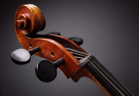 cello: Cello scroll on headstock and tuning pegs