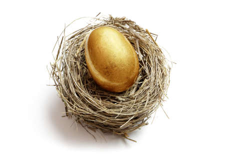 retirement age: Gold nest egg concept for retirement savings and financial planning