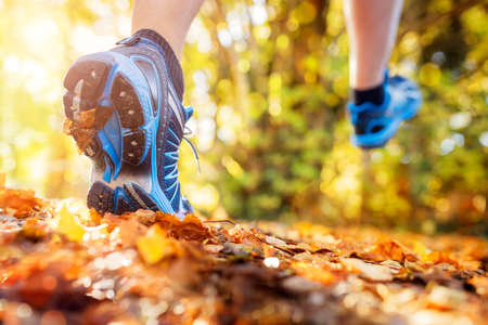 Outdoor cross-country running in summer autumn sunshine concept for exercising, fitness and healthy lifestyle Lizenzfreie Bilder