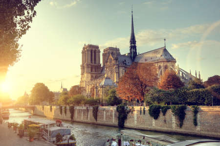 ile de la cite: Notre-Dame cathedral in Paris, France at sunset