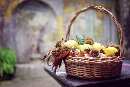 Zitronenweidenkorb-Tischschmuck im italienischen Restaurant