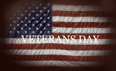 Thank you veterans with flags