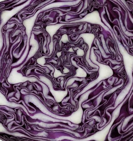 Red cabbage on the white backgound Banco de Imagens - 69693116