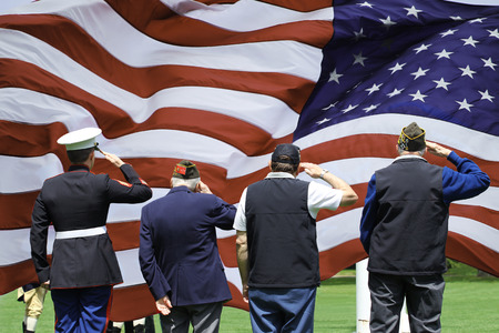 Soldier and Veterans Saluting at Memorial Day Ceremony Editöryel