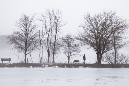A Man was Walking dog on the bank in foggy lake in winter Stok Fotoğraf - 118200558