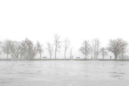 Foggy Lake in Winter
