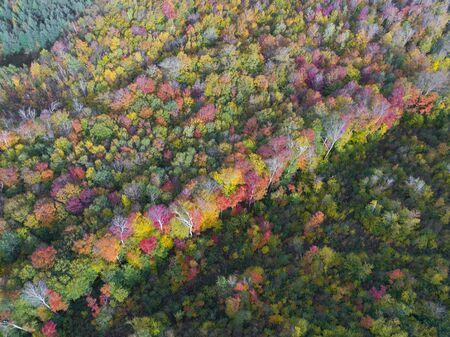 Beautiful Mountain Foliage in New Hampshire, USA