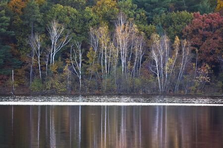 Fall Lake and Reflection in Beautiful Colors