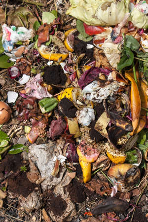 desechos organicos: organic waste taken from above. Bio-waste with pieces of eggs, vegetables and other food in decomposition.