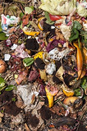 organic waste: residuos org�nicos tomada desde arriba. Biorresiduos con trozos de huevo, verduras y otros alimentos en descomposici�n. Foto de archivo