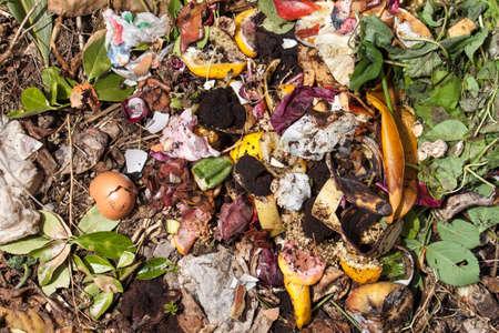 desechos organicos: vista desde arriba de los residuos org�nicos. Biorresiduos con piezas de huevos, cebollas y otras frutas en descomposici�n.