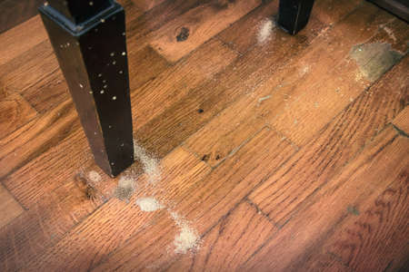 wood borer attack, infestation is recognisable by sawdust on the floor