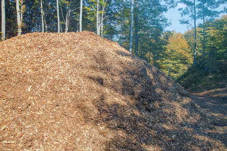 Stack of woodchips, pieces of wood used as an organic mulch or as a biomass solid fuel Banco de Imagens