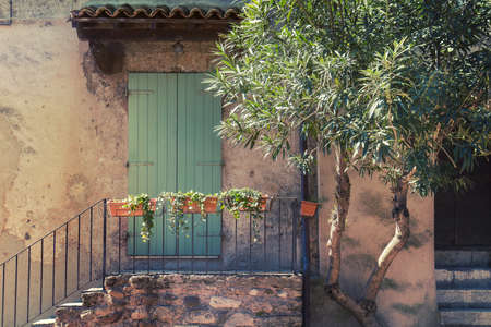 Typical italian architecture detail. Olive tree near a old mediterranean house