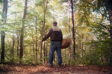 man in a bright autumn forest, he has a wicker basket and a walking stick